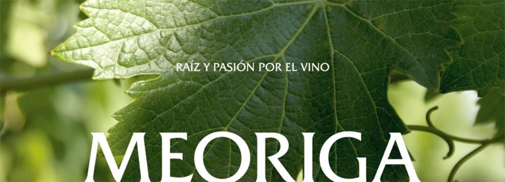 vinedo_meoriga_01