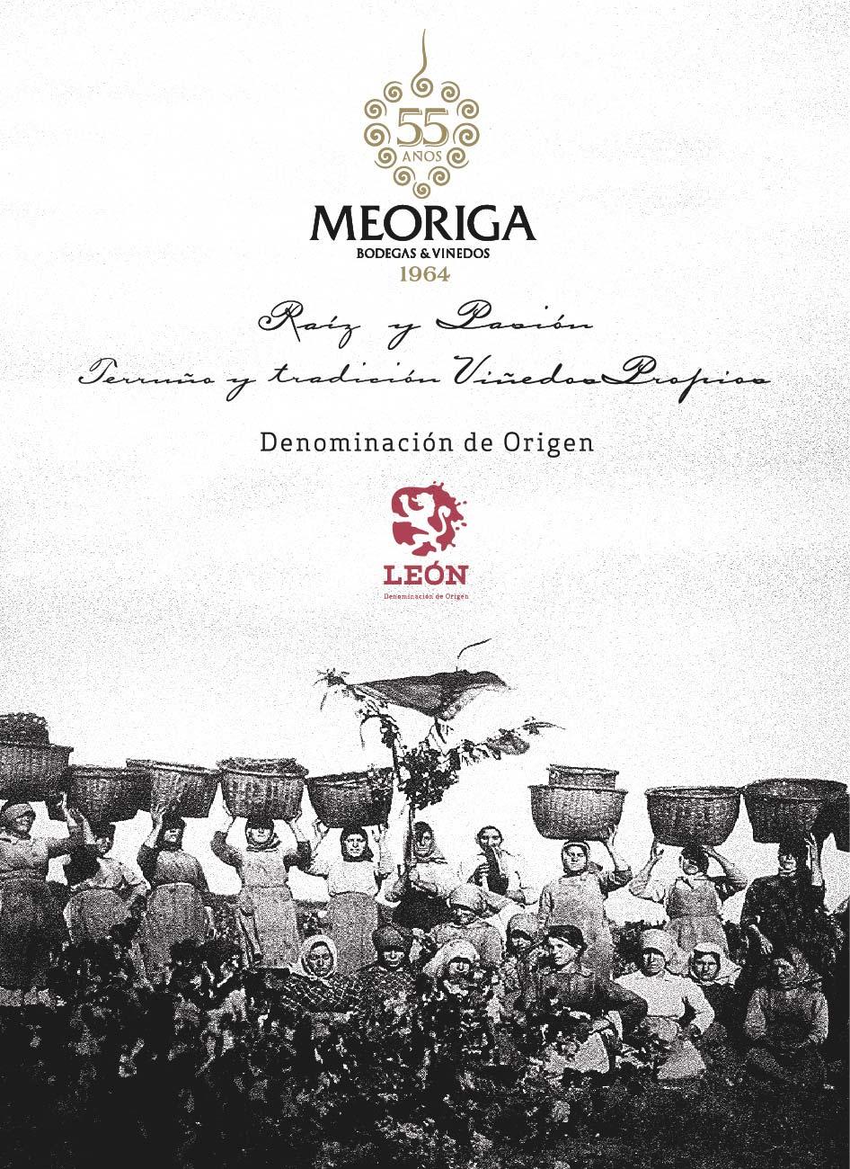 meoriga_vinedos_denomiacion_de_origen_leon_03
